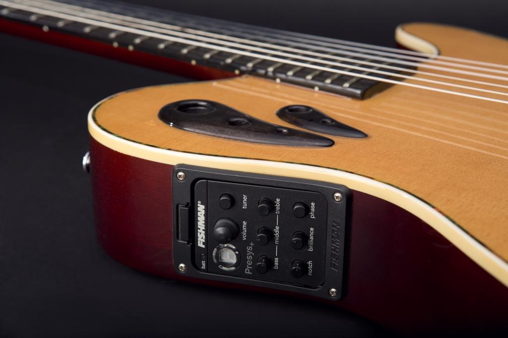 9892 1024x682 - ERG Custom Guitars