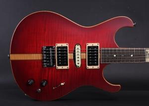 SSHA5975 300x214 - ERG Custom Guitars